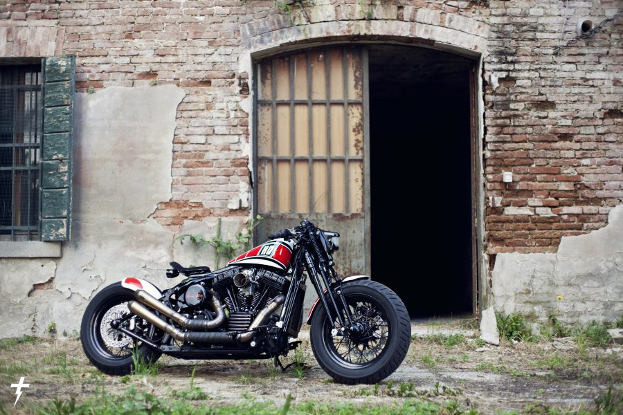 SPORTSTER SPECIAL